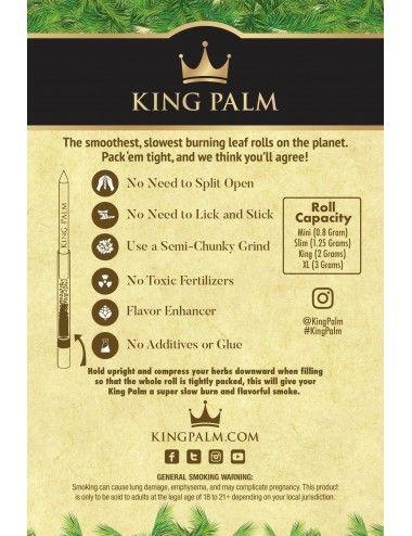 King Palm Cone Leaf - XL