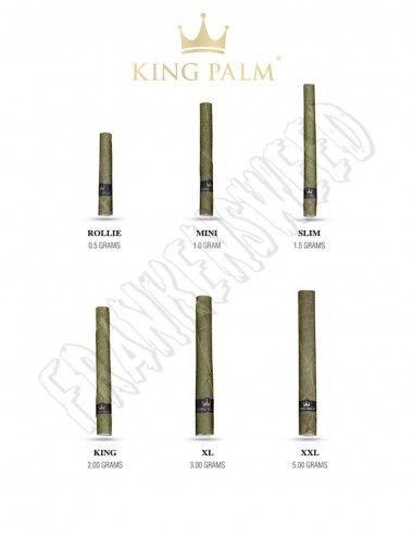 King Palm Cones Leaf - 2...