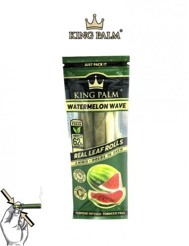 King Palm Watermelon Wave -...